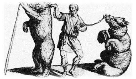 Сморгонская медвежья академия